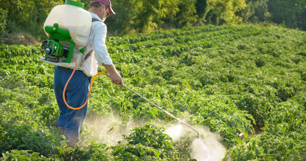 2017 07 05 man spraying pesticide on field of plants 1024x538 - MESLEKİ OLARAK PESTİSİTLERE MARUZ KALMAK PARKINSON, ALZHEIMAR VE ALS HASTALIĞI RİSKİNİ ARTTIRIYOR.