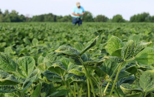 pestisit6 - PESTİSİT MARUZİYETİ: SAĞLIĞA ETKİLERİ NELER? -1-