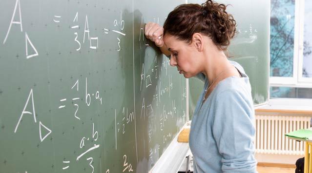 """ogretmen4 - """"Varis, öğretmenliğin doğal bir sonucu olarak görülüyor"""""""