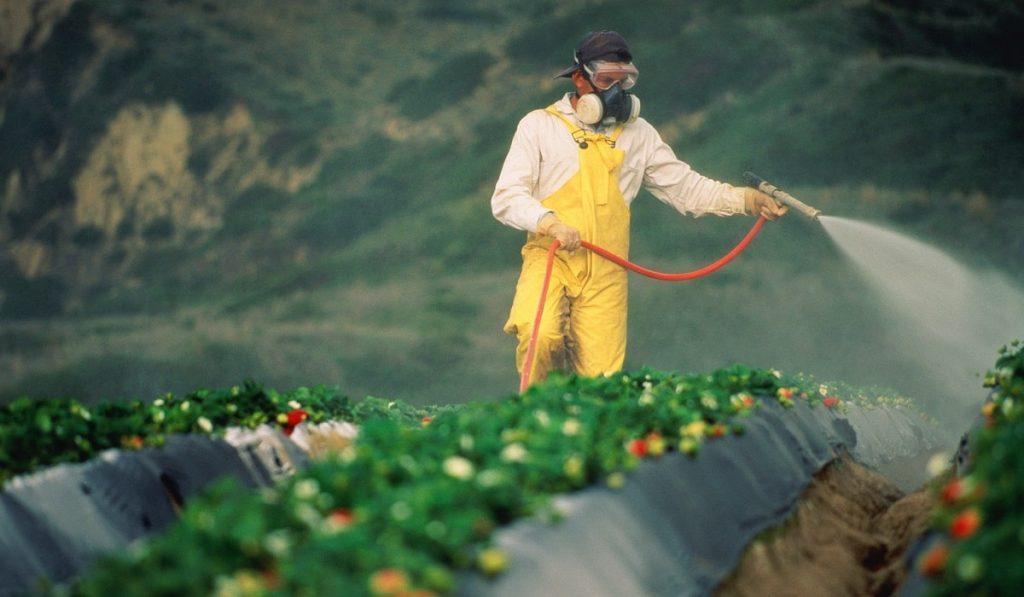 pestisit - TARIM İŞÇİLERİNDE PESTİSİT MARUZİYETİ